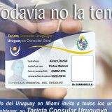 """La  Tarjeta Consular Uruguaya   o  """"TCU""""  comenzó a emitirse a principios del año 2012"""