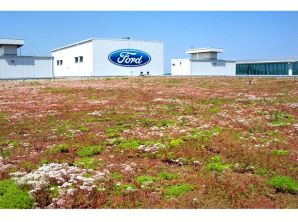 Ford was the 10th-largest company, and the second-largest automaker, on the Fortune 500 for 2013.