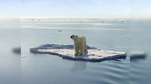 Empresas como Shell o Gazprom están ya en el Ártico perforando sus fondos para buscar petróleo. No quieren testigos.