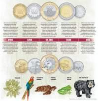 Grafico-Nuevas-monedas-ampliacion-10062012