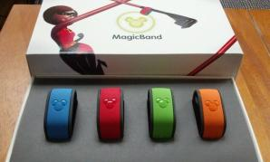 magic band-