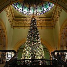 queen-victoria-building-christmas-tree_k3vT7_48