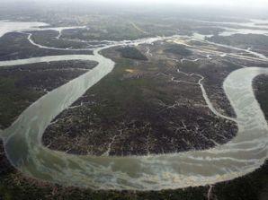 Arroyos y vegetaciones devastadas como consecuencia de los derrames de los ladrones de petróleo en el Delta.